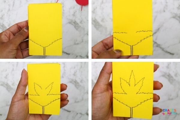 Draw the autumn leaf using pencil