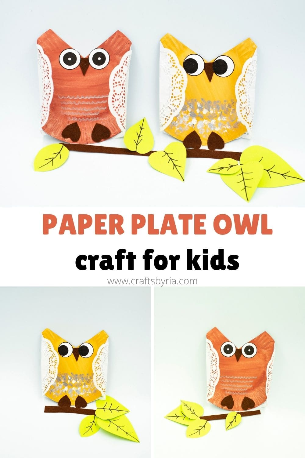 Paper plate owl craft for kids-image for pinterest